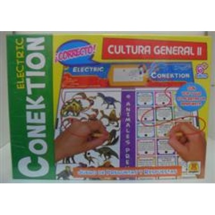 Conek.cultura Gral 2  Implas